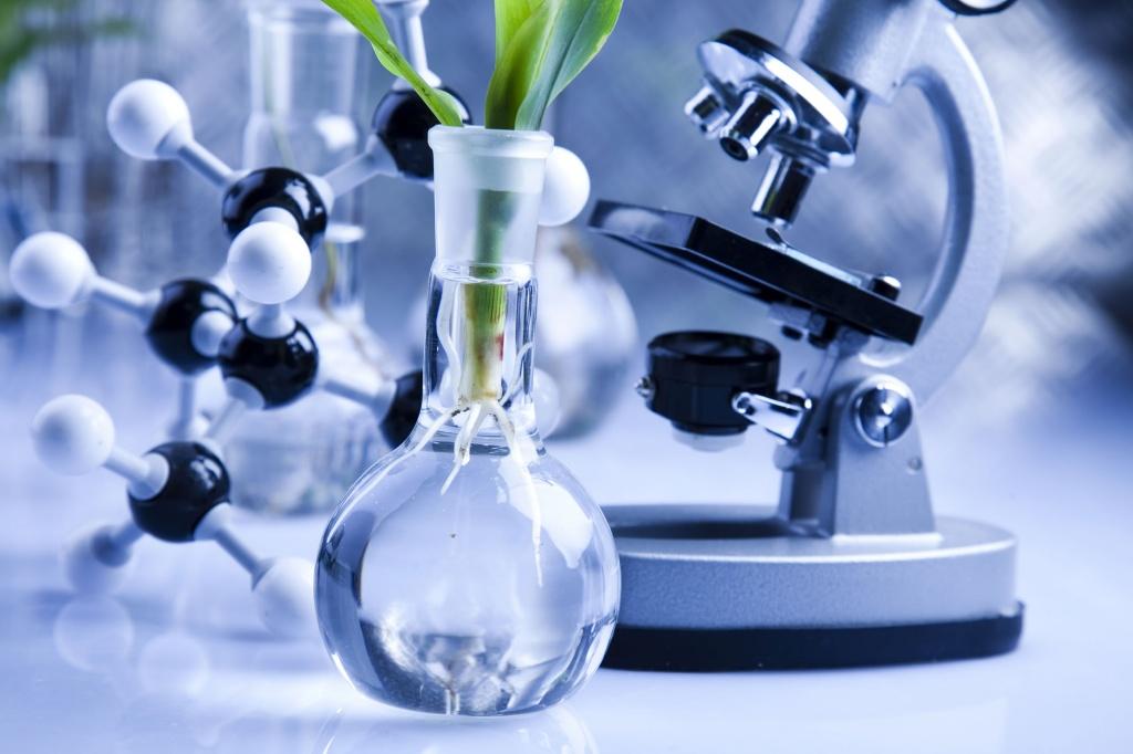 Инновационные продукты американо-украинской компании Stoller для стимуляции роста растений